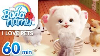 I Love Pets | Badanamu Compilation L Nursery Rhymes & Kids Songs