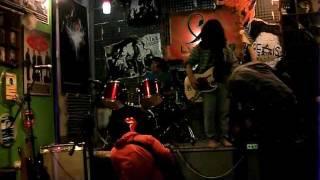 ARC YELLOW - MAMMAL'S @LUMBUNG PADI,CIPETE