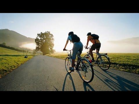 Новые ПДД для велосипедистов. Утро с Губернией. GuberniaTV