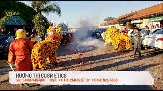 Việt Hương đốt bao nhiêu mét pháo khai trương đầu năm tại Mỹ Tết Kỷ Hợi 2019?