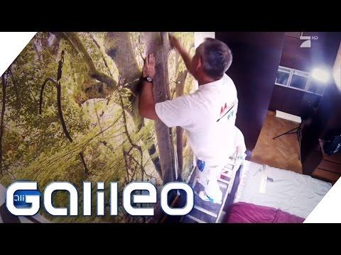 Fototapeten: Der neue Wohntrend im Check   Galileo   ProSieben