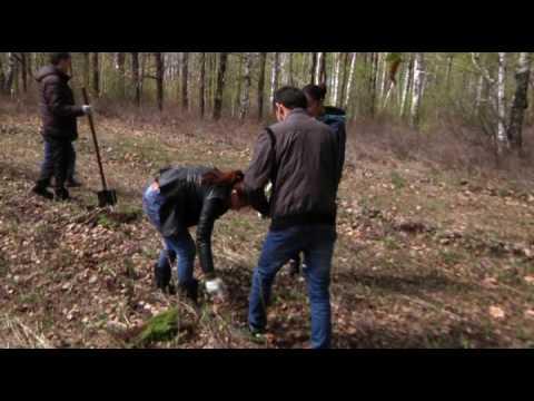 Министерство лесного хозяйства Башкортостана поддержало акцию «Лес Победы»