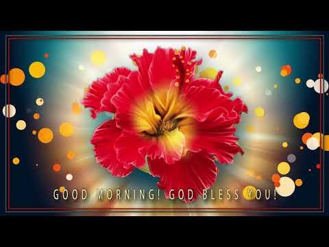 🌞Good morning! God bless you!🌞