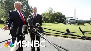 President Donald Trump Announces Acosta's Resignation As Secretary Of Labor | MSNBC