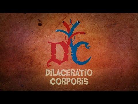 Vidéo de Nicolas Delestre