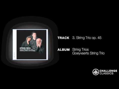 play video:Goeyvaerts Trio; Arnold Schönberg - String Trios op. 45