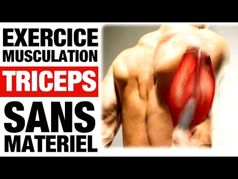 Les circulations sanguines du muscle du coeur