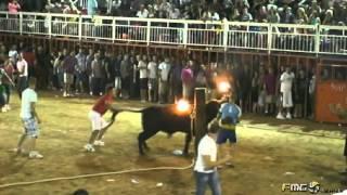 preview picture of video 'TORO EMBOLADO FIESTAS MONCADA 2012.'