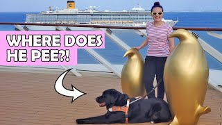 I Took My Guide Dog On A Cruise Ship For A Week!