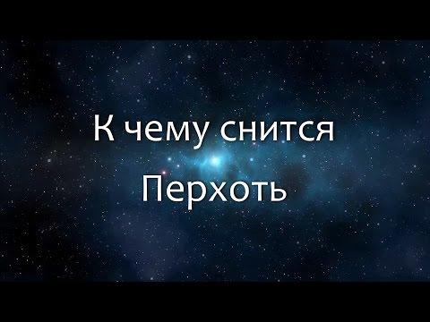 К чему снится Перхоть (Сонник, Толкование снов)