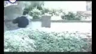 تحميل و استماع راغب علامه - فيديو اغنية قلبي عشقها .flv MP3