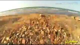 preview picture of video 'شاهدو اكثر المناطق جمالن وروعة في اليمن هيا أب و المهرة حوف و جزيرة سقطرئ نتابع...'