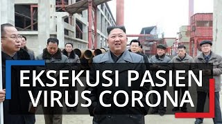 Demi Menghindari Penyebaran, Kim Jong Un Tembak Mati Pejabat yang Langgar Karantina Virus Corona