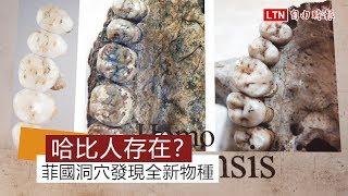 哈比人真實存在? 菲國洞穴發現前所未見神奇物種