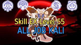 Skill EX Level 55 All Job Sorceress Dragon Nest M