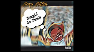 Joey Mitch- Stupid Go Dumb