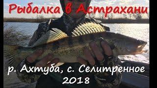 Селитренное астраханская область рыбалка в апреле