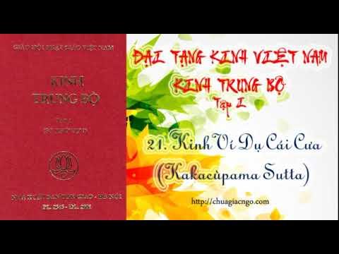 Kinh Trung Bộ - 021. Kinh Ví dụ cái cưa