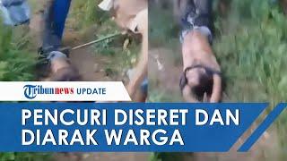 Viral Pria Diduga Pencuri Diseret dan Diarak Warga, Tangan Kaki Diikat dan Dipukuli Pakai Besi