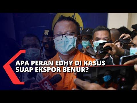 kasus suap ekspor benur ini peran menteri kkp edhy prabowo menurut plt jubir kpk