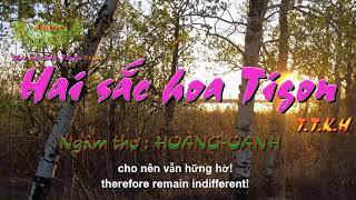 HAI SẮC HOA TIGON - TTKH - Ngâm thơ : HOÀNG OANH