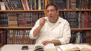 פרשת שמיני: על טומאה וטהרה