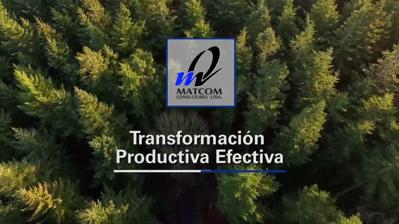 Transformación Productiva Efectiva
