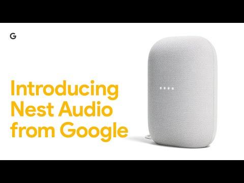 Google Nido Audio (Google Assistant)
