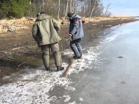 Миша ловит рыбу)))