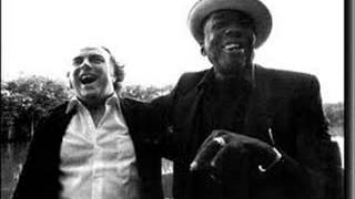 ONE IRISH ROVER - Van Morrison and John Lee Hooker