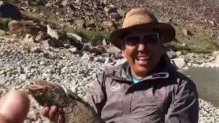 trout ,Памир Рыбалка форель