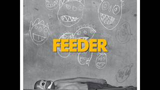 Feeder - Skylife