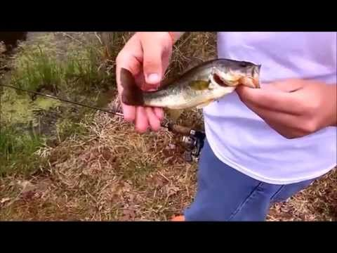 Craft Outdoors Episode 3 – Pond Fishing