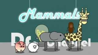 What Are Mammals? Easy And Cute Animation!