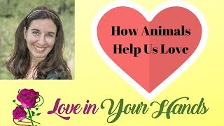 Youtube with Love in Your HandsLove in Your Hands Podcast: How Animals Help Us Love with Rachel Augusta sharing on Palm ReadingOnline DatingRelationshipFor finding my Soulmate