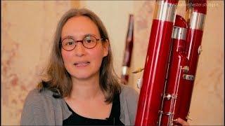 Staatsorchester Stuttgart - Das Kontrafagott - Musiker und ihre Instrumente