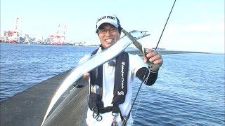 神戸港沖でタチウオ絶好調!ジグとワインドで爆釣モード!/四季の釣り/2016年9月2日OA