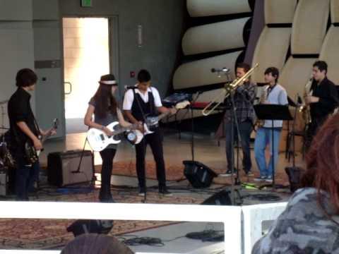 The Monkey Jam - The Skanky Monkees