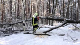preview picture of video 'Beseitigung von Bäumen auf der Keulenbergstraße | Feuerwehr Pulsnitz'