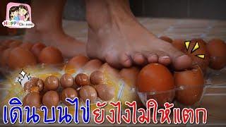 เดินบนไข่ ยังไงไม่ให้แตก!!!  งานนี้กระจายทั้งบ้าน พี่ฟิล์ม น้องฟิวส์ Happy Channel