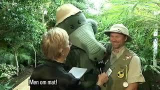 Aarne Alligaattori SVT 13102017