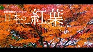 日本の紅葉/お勧め紅葉スポット
