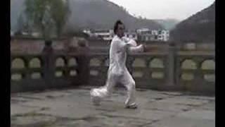 Wudang Baguazhang