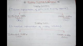 🔴53 | Supply Schedule & Curve | Individual Supply Curve & Schedule | Market Supply Schedule & Curve