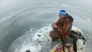 Рыбалка чудское озеро