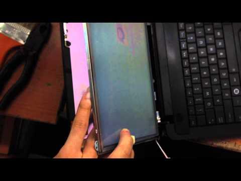 Màn Hình Laptop Toshiba Satellite C800