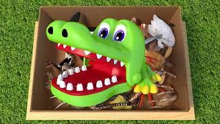 Изучай Цвета С Дикими Животными В Коробке И Игрушках Для Детей - Gombal 7