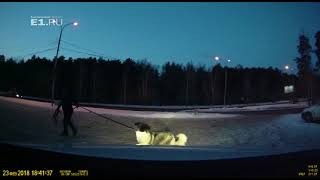 Авария с развозчиком пиццы на ЖБИ