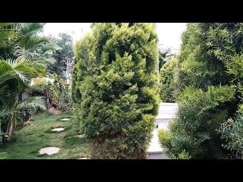 Beautiful gardens HOME and sitting granite