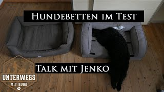 "Hundebetten im Test | Günstig vs. ""Teuer"""